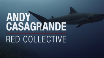 RED Collective: Andy Casagrande via Shot on RED