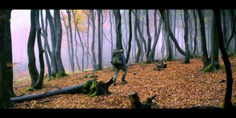 "Emre Erkmen Talks Colour Palates and the ARRI Alexa Camera on ""AUF EINMAL"""