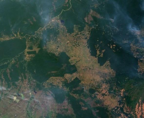 Deforestación en el Amazonas