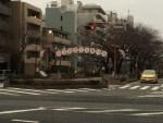 文京区毎年の桜祭り