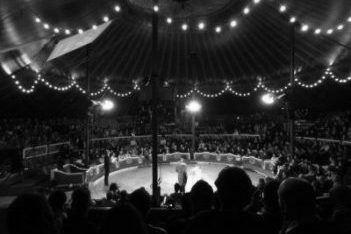Actuación del Circo Raluy