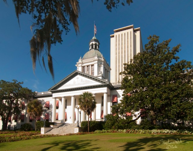 The historic Florida capitol. Credit: Stephen Nakatani, Flickr