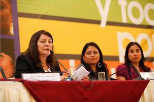 10. Perú. Presentación de los resultados de la Consulta del Plan Nacional de Igualdad de Género 2012 – 2017