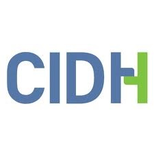 19. OEA: Reporte sobre violencia a lesbianas ante CIDH