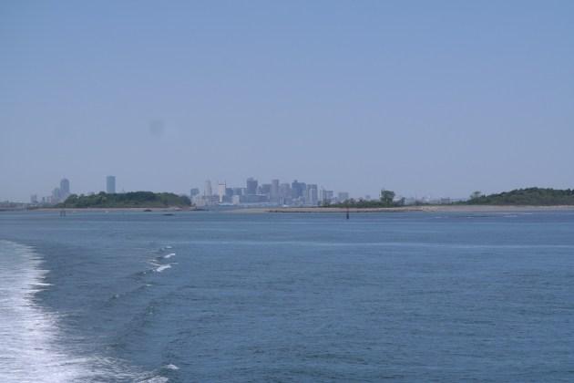Boston Skyline Whale Watch