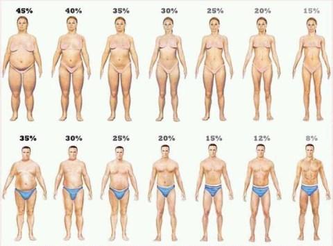 fatpercent