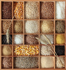 Grain3