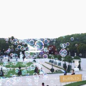Des bulles des bulles des bulles bulles bubbles versailles chateaudeversailleshellip