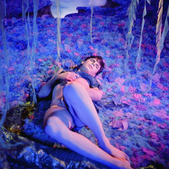 James Bidgood, Field of Blue Flowers (Bruce Kirkman)
