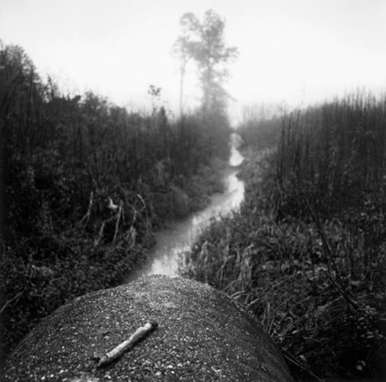 Dave Anderson, A View from the Drain