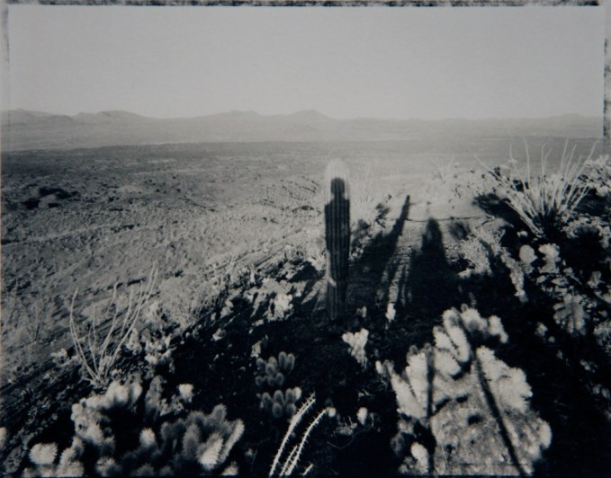 Mark Klett, Self Portrait with Saguaro