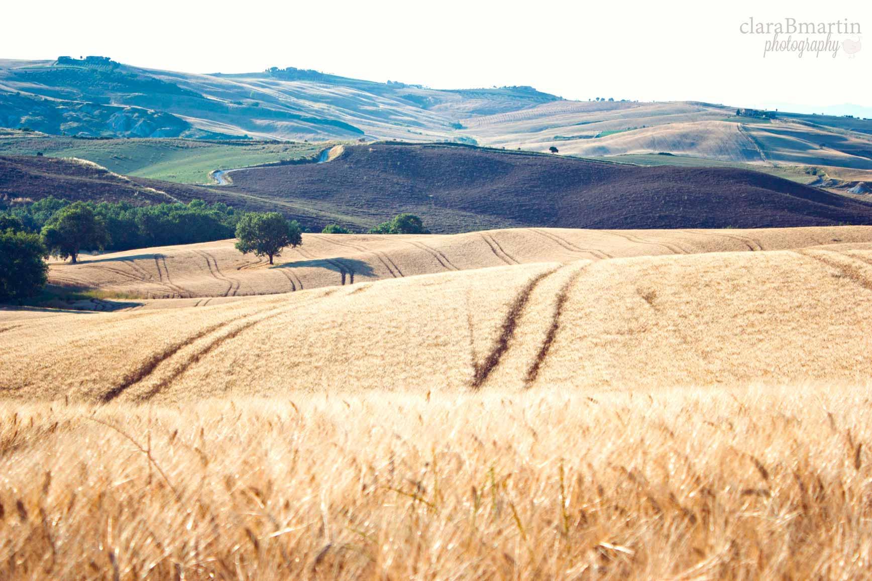 Toscana2