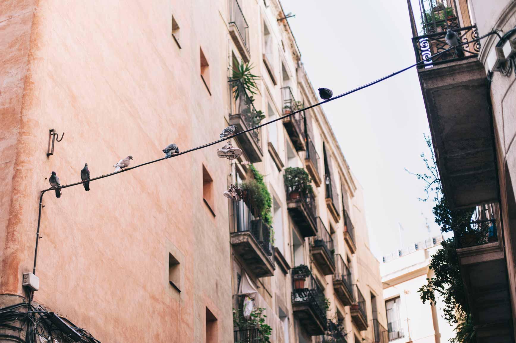 El Born-Barcelona-claraBmartin-09