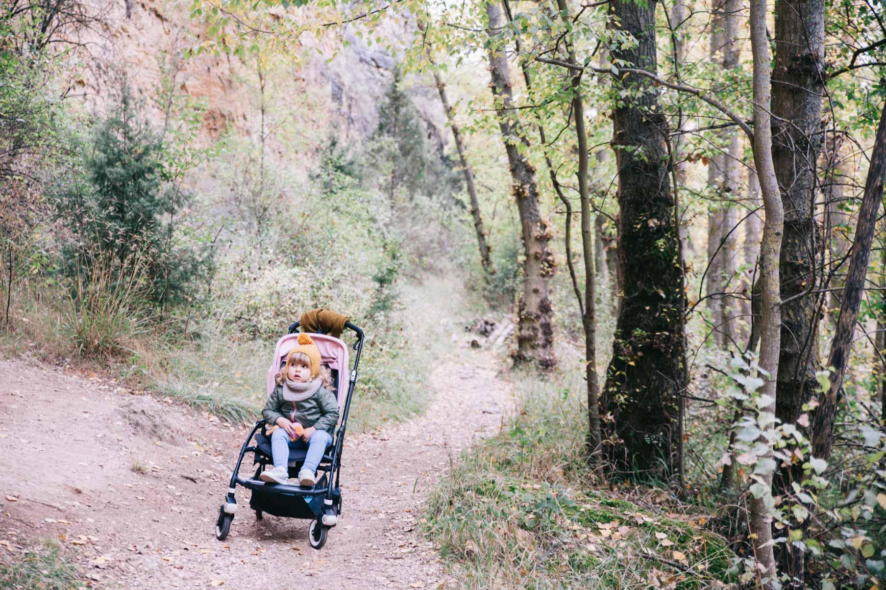 Bosques cerca de Madrid para ir con niños - Hoces del Duratón