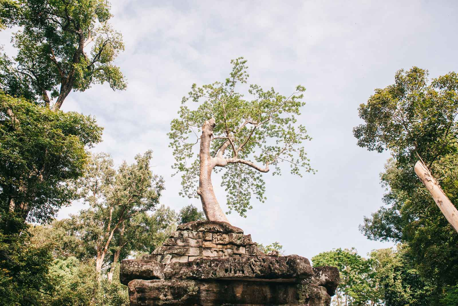 Camboya_243