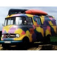 Reincarnate Samba: 1965 Mercedes-Benz L319