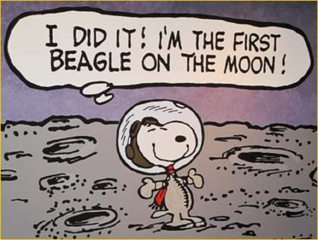 156537017-Charles_Schultz_Museum_Snoopy_on_Moon_1_