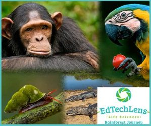 Life Science Curriculum Rainforest Journey from EdTechLens