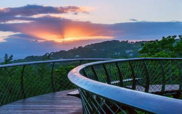 Sunrise over the Boomslang Kirstenbosch