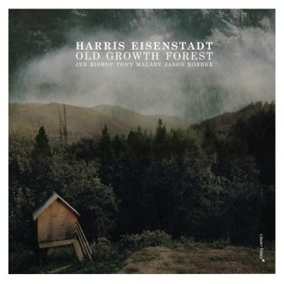 Down Beat – Harris Eisenstadt – Old Growth Forest ****