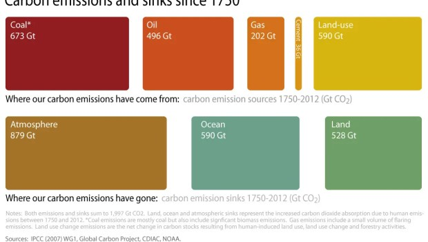 global carbon emissions sinks