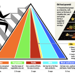 A Healthy Example: Our Introduction to the New Food Pyramid