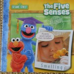 Sensory Boxes – Parenting with Science and Relaxation