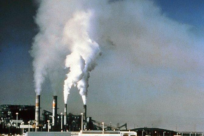 carbon-credits