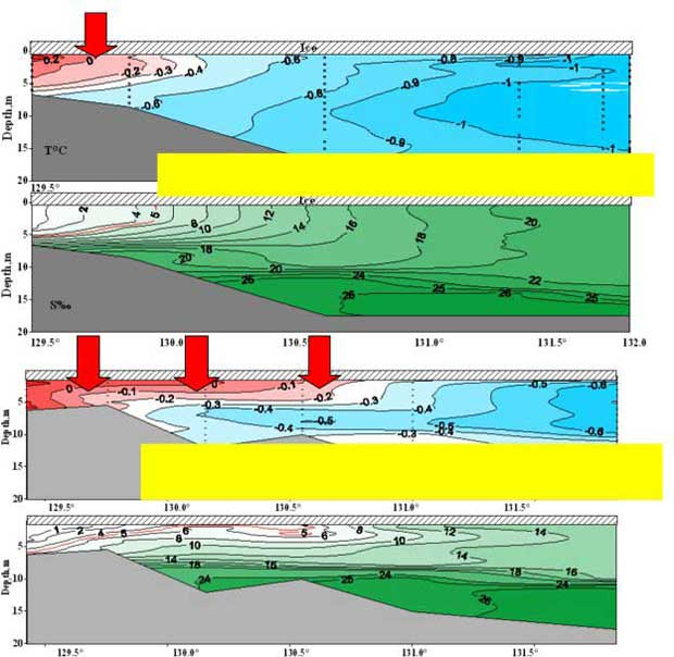 Fig 1. Increase in river runoff to the ESAS is significantly 2002г. Расходр.Лены 2500м3/с noticeable in winter. Owning to it,propagation of warm fresh waters is increasing and occurs laterally and top-down. Fig 2. 2007г. Расход р.Лены 5300м3/сcauses further warming of the sub-sea permafrost in shallower part of the ESAS.