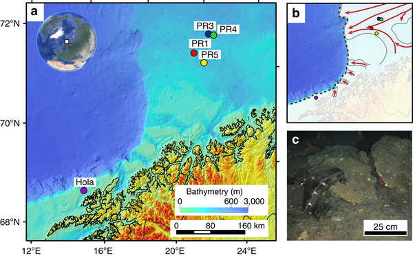 athymetric map of the study area and remotely operated underwater vehicle (ROV) recovery of authigenic carbonate