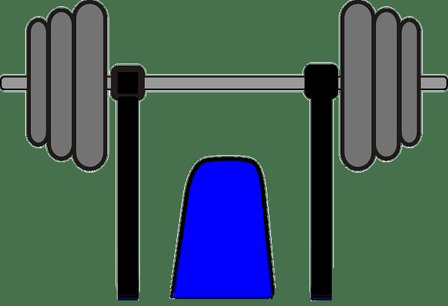 weights-179520_640