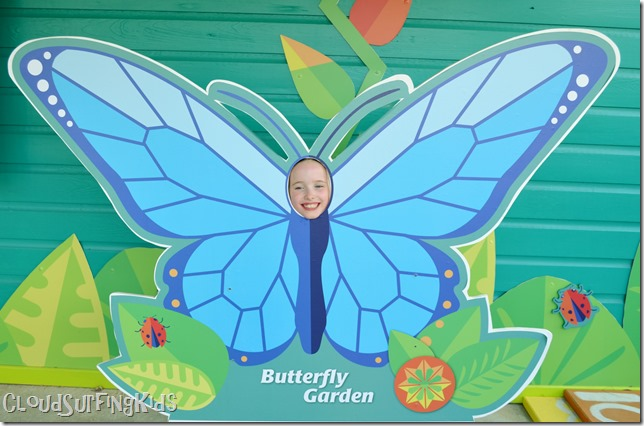 Charlotte Amalie Butterfly Garden Photo