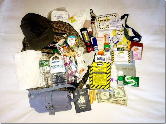 Travel Emergency Kit Contents