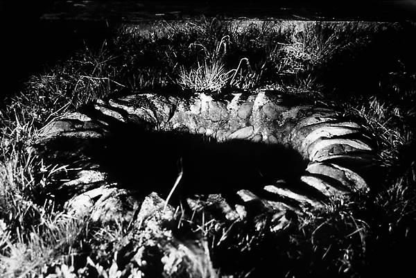 Evgen Bavcar el fotógrafo ciego