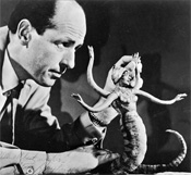 IMAGE: Ray Harryhausen