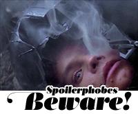 spoilers-swirl-helmet