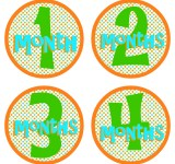 Make Your Own Monthly Baby Stickers