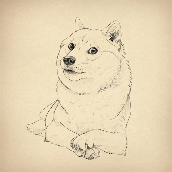 Such Tutorial  Many Fun  How to Draw Doge  Final product image