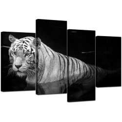 Small Of Black And White Canvas Art