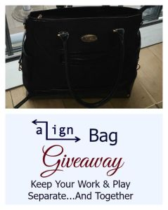 From Work to Gym with aLign Bag. Giveaway and a Workout!
