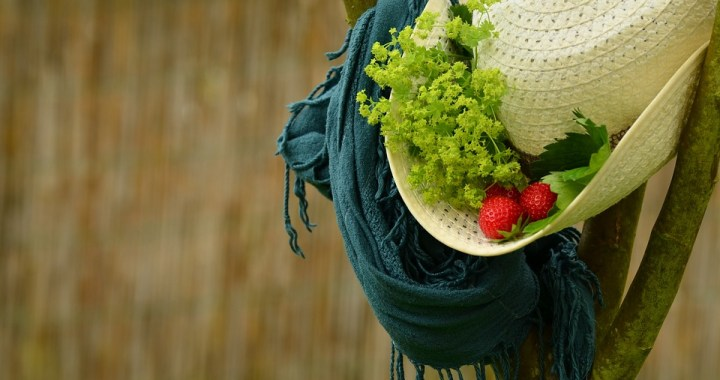 hat-1472974_960_720