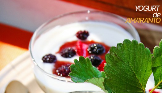 Yogurt de amaranto