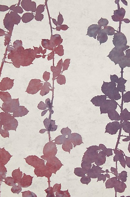 purple burgundy flutter vine wallpaper anthropologie foliage leaves wall decor design