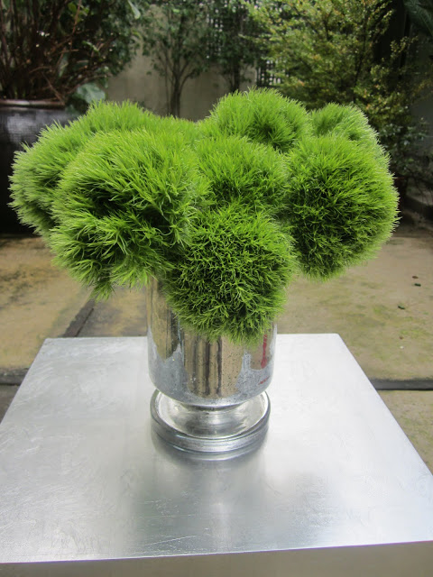 dianthus green trick in a mercury glass cylinder vase on a small metal table on a patio