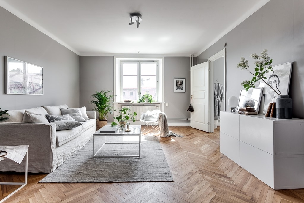 Grey home with a glass partition - COCO LAPINE DESIGNCOCO LAPINE DESIGN