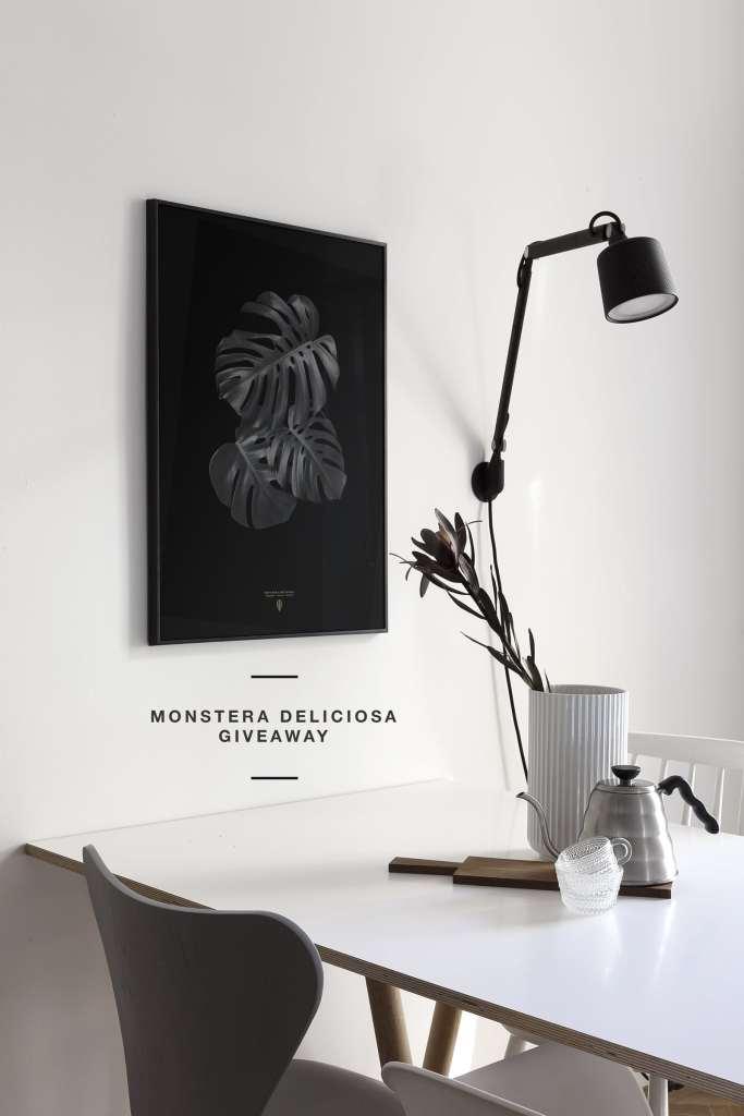 Monstera Deliciosa giveaway - via Coco Lapine Design blog
