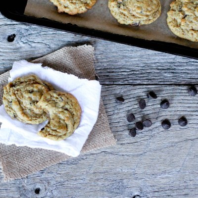 Chocolate Chip Cookies - Coconut Contentment (Grain-free, Gluten-free, Dairy-free)