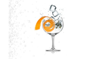 Gin and Tonic Infographic, Gin and Tonic with orange peel, gin and tonic with cardamom, combining gin and tonic