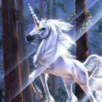"""""""The Living Unicorn"""".. when Ringling Bros. lied to me."""