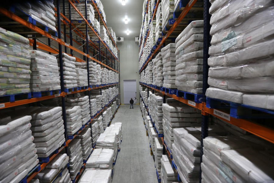 Temperature-controlled storage chamber at ColdStar's flagship Distribution Center in India (C)